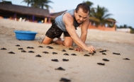 'Turtle-Man' protects sea turtles from poachers in Mexico