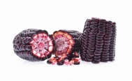 5 health benefits of purple corn