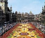 Guanajuato to bring flower bed to Brussels
