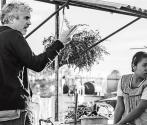 Roma received 3 Golden Globe nominations