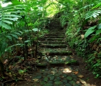 Xalapa Botanical Garden among top 10 North American Gardens Worth Travelling For