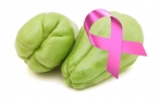 Scientists from UNAM develop chayote to treat cancer