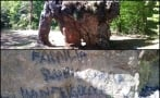 Mexican tourists vandalize 65-million-year-old rock in Tamaulipas