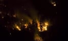 Mexican scientists create eco-friendly forest fire detectors