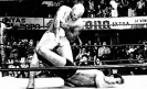 New TV series about El Santo in the works