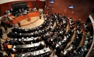 National Guard unanimously approved by Mexican Senate