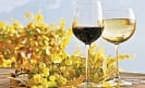 Mexican wines are among the best in the world