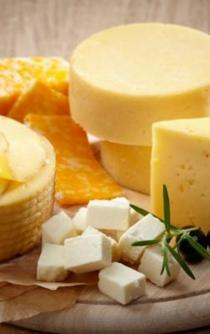 Fifth festival of artisan cheese in Tabasco