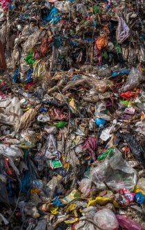 The plastic you drink everyday