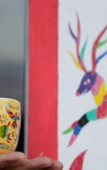 Mexican artisans claim copyright infringement by corporations