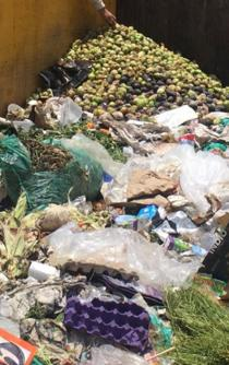 Mexico wastes more than 20.4 million tons of food each year
