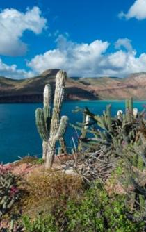 Climate change to submerge several Mexican islands