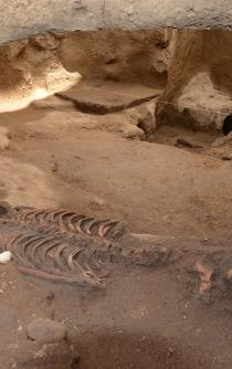 Pre-Hispanic ruins discovered in the south of Mexico City