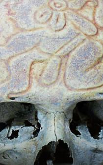 The mysterious ancient carved skulls