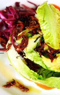 Grasshoppers, a sustainable alternative to meat