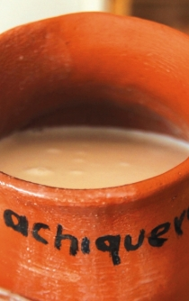 'Pulque' can improve your digestion