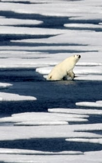 Evidence for man-made global warming hits gold standard level of certainty