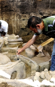 Mexico's new international airport to be built over mammoth remains