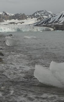 Climate change opens new challenges and opportunities in the Northern Pole