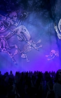 Celebrate Mexico's Day of the Dead in Chapultepec park