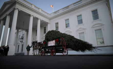 christmas-seasonwhitehouse_52666855.jpg
