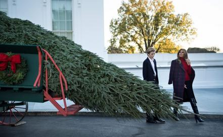 us-politics-trump-christmas_tree_52666833.jpg