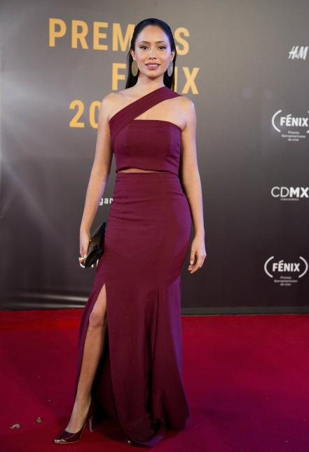 mexico_iberoamerican_fenix_film_awards_red_carpet_53404438.jpg